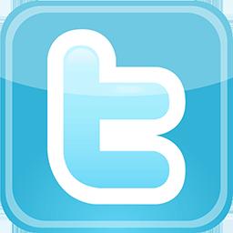 500 Twitter Followers per day
